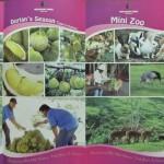 mini zoo, Resort Semuji, Gambang, Kuantan, adventure, nature, team building, training, family vacation, fruit orchard, chalets, tourist attraction, travel guide, Useful information
