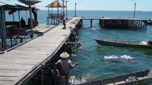 adventure, nature, suku Bugis, backpackers, Pulau Tihi Tihi, Island, Bontang Lestari, Borneo, Kalimantan Timur, objek wisata alam, rumput laut, seaweed farming, tourism, tourist attraction, traditional,