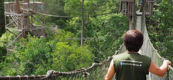 National Park, Kota Balikpapan, Kalimantan Timur, Kutai Kartanegara, Jembatan gantung, backpackers, destination, hutan konservasi, primary jungle, Nature Reserve, outdoors, Obyek wisata, tourist attraction, travel guide, 婆罗州旅游景点