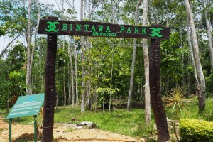 outdoors, backpackers, Borneo, Indonesia, East Kalimantan, conservation, Hutan Lindung Sungai Wain, Nature Reserve, Pusat Konservasi, tourism, tourist attraction, alam, Obyek wisata, travel guide,