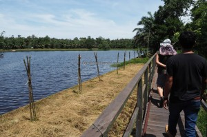 outdoors, backpackers, Kalimantan Timur, Hutan Lindung, river, primary jungle, mangrove forest, wildlife, Pusat Konservasi, ecotourism, tourist attraction, travel guide, objek wisata alam, bekantan,