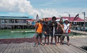 adventure, authentic, suku Bugis, backpackers, destination, Pulau, Island, Borneo, Indonesia, East Kalimantan, Objek wisata, seaweed farming, travel guide, tourist attraction, 婆罗州