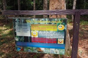 National Park, Kota Balikpapan, Indonesia, Kalimantan Timur, Kutai Kartanegara, Samboja, conservation, hutan primer, primary jungle, rainforest, obyek wisata alam, Tourism, tourist attraction, travel guide,