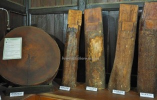 Museum Kayu, backpackers, destination, collection, Borneo, Indonesia, Kutai Kartanegara, Panji Sukarame, nature, Tourism, tourist attraction, travel guide, 东加里曼丹, 博物馆,