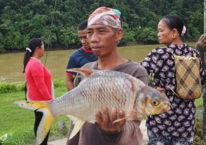 backpackers, destination, Sungai Rajang, Balui river, Borneo, Kapit, Dayak, native, Orang Ulu, ikan, local market, tourism, tourist attraction, travel guide, 沙捞越婆罗州,
