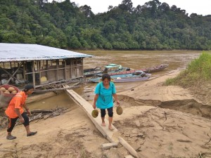authentic, Sungai Rejang, Balui river, Borneo, Kapit, Dayak, native, durian, exotic fruits, Transportation, Tourism, traditional, travel guide, 沙捞越婆罗州, 婆罗州,