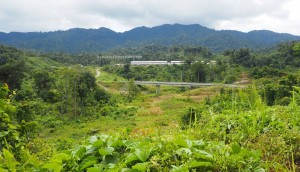longhouse, rattan handicrafts, backpackers, destination, Belaga, Kapit, Bintulu, Malaysia, Dayak Penan, native, Ethnic, tribal, Tourism, travel guide, 婆罗州长屋