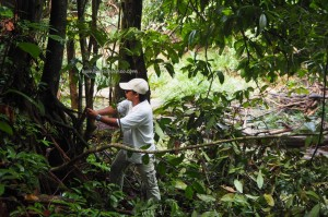 jungle trekking, adventure, nature, outdoors, Sungai, AIr Terjun, backpackers, Tegulang resettlement, Long Wat, village, Borneo, Malaysia, native, Tourist attraction, 沙捞越婆罗州