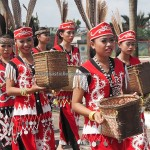 pawai budaya, Naik Dango, paddy Harverst Festival, indigenous, event, native, tribe, Borneo, West Kalimantan, Kampung Budaya, Landak, Ngabang, Tourism, travel guide, 西加里曼丹丰收节日,