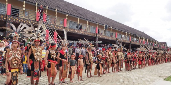 naik dango, Gawai padi, paddy harvest festival, thanksgiving, authentic, indigenous, culture, tribal, tribe, Borneo, West Kalimantan, Kampung Budaya, Tourism, travel guide, 婆罗洲丰收节日
