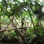 adventure, authentic, backpackers, dayak bidayuh, native, Kampung Gumbang, Bau, Kuching, Malaysia, 沙捞越, Tourism, traditional, travel guide, village,