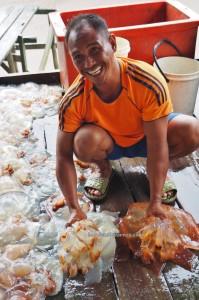 Kilang proses Ubur Ubur, Processing Factory, exotic seafood, adventure, backpackers, Betong, Malaysia, ethnic malay, fishing village, homestay, Kampung Melayu, Tourism, travel guide, National Park, 沙捞越水母
