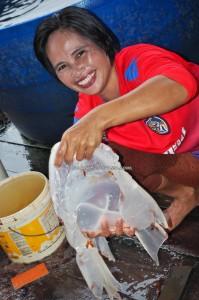Kilang proses, Stingless Jellyfish Processing Factory, exotic seafood, adventure, backpackers, Betong, Malaysia, ethnic malay, fishing village, homestay, tourist attraction, travel guide, Taman Negara Maludam, 婆罗洲水母