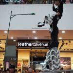 Plaza Merdeka, Sarawak, Kuching, Malaysia, championship, competition, traditional, Chinese culture, Dragon and Lion Dance Association, event, Tourism, travel, Tian Eng,