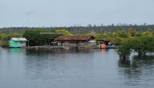 National Park, lake, Ramsar site, Boat ride, freshwater swamp forest, West Kalimantan, Lanjak, Borneo, Kapuas Hulu, Indonesia, island, tourism, traditional, travel guide, 婆罗洲湖, 旅游景点,