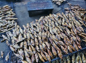 Keropok Tahai, Smoked fish, fishy snacks, exotic delicacy, seafood, fishing village, Malay, traditional, backpackers, Borneo, Limbang, Tourism, travel guide, 老越砂拉越, 美食