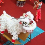 Kuching, Malaysia, Plaza Merdeka, championship, competition, traditional, Chinese culture, Tourism, 天鹰, 狮王争霸, 舞狮, 马来西亚, 龍狮会馆