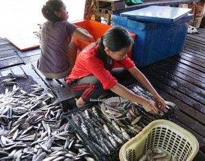 Keropok Tahai, fishy snacks, exotic delicacy, water village, Kampung Melayu, authentic, traditional, malay, Borneo, Lawas, Limbang, Malaysia, Tourism, travel guide, 原著民旅游景点