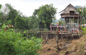Gawai Padi, authentic, backpackers, Bengkayang, Borneo, Desa Tangguh, Kampung Kadek, dayak bidayuh, native, tribe, wisata budaya, Tourism, travel guide, crossborder, village, 西加里曼丹婆罗洲,