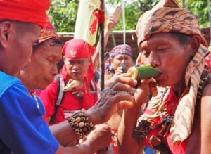thanksgiving, Gawai Padi, authentic, indigenous, Borneo, West Kalimantan, Desa Tangguh, Kampung Kadek, Gumbang, Siding, dayak bidayuh, Obyek wisata, culture, travel guide, transborder, 原著民丰收节日