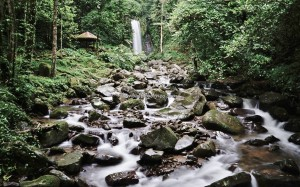 Rainforest Paradise, air terjun, adventure, nature, outdoor, jungle trekking, conservation, Crocker Range Park, backpackers, destination, Borneo, Interior Division, tourist attraction, Transborneo, 沙巴婆罗洲, 瀑布旅游景点,