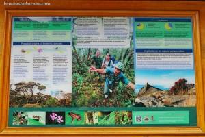 Tambunan, Mahua waterfall, adventure, nature, outdoor, jungle trekking, exploration, conservation, backpackers, destination, Borneo, Malaysia, Tourism, tourist attraction, crossborder, 沙巴马来西亚