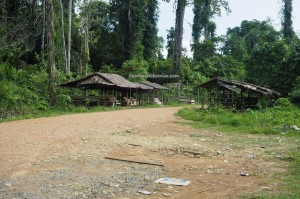 Kampung Biatan Bapinang, hotspring, detox, nature, outdoor, backpackers, destination, Borneo, Kalimantan Timur, exploration, Obyek wisata, tourist attraction, travel guide, Transborneo, 东加里曼丹, 旅游景点