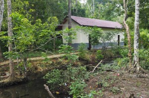 village, Kolam Air Panas Asin Pemapak, hotspring, Health, nature, outdoor, backpackers, Borneo, Kalimantan Timur, Indonesia, exploration, Tourism, tourist attraction, travel guide, transborder,