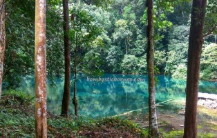 Kampung Tembudan, Danau Tulung Ni Lenggo, adventure, nature, backpackers, destination, Batu Putih, Berau, Indonesia, family vacation, hidden paradise, Obyek wisata, travel guide, Transborneo, 婆罗洲湖, 旅游景点