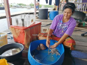 Kampung Melayu, Malay Fishing Village, authentic, traditional, backpackers, Borneo, Limbang, tourist attraction, travel guide, seafood, dried prawn, Keropok tahai, transborder, 老越砂拉越