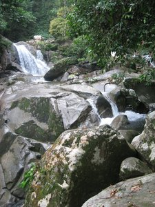 Borneo, Sarawak, rafflesia, lundu, largest flower, mountain, nature, national park, waterfall