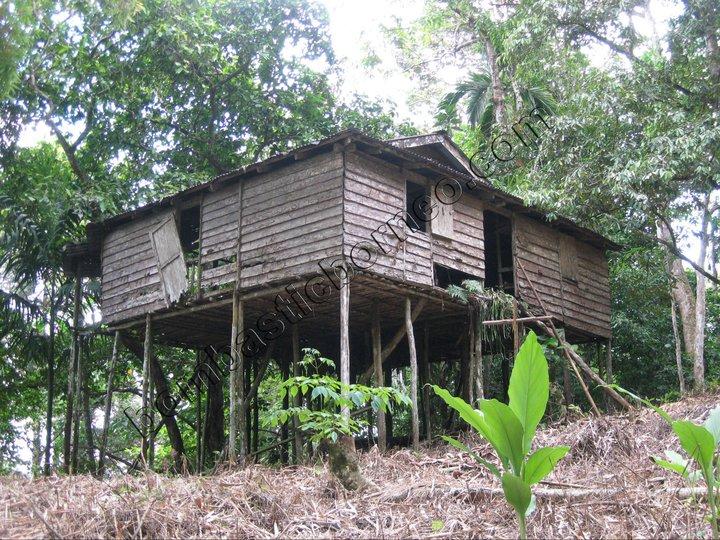 Borneo height, Sarawak, kuching, stream, waterfall, nature, village, headhunter