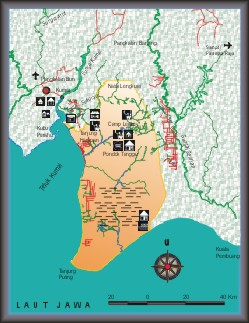 Borneo, Kalimantan tengah, central kalimantan, national park, map, nature, adventure, outdoor, Indonesia, orang utan, proboscis monkey, taman nasional tanjung puting, national park, kotawaringin