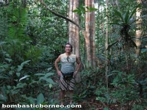 Wetland Park, Danau, orang asli, Ramsar site, Triang, wildlife, native, village, Pesona resort, Tasek Bera, Tasik, Lake,