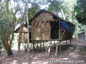 Danau, nature, adventure, outdoor, orang asli, jungle trekking, fishing, pesona lake resort, Ramsar site, Triang, wildlife, Tasik, Wetland Park,
