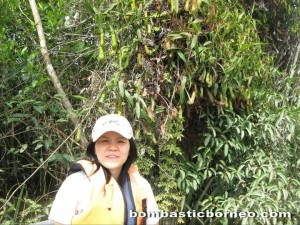 Wetland Park, Danau, nature, adventure, outdoor, orang asli, jungle trekking, Ramsar site, Triang, Tasik, native, village, Pesona Resort,