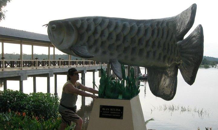 Danau, nature, adventure, outdoor, orang asli, jungle trekking, fishing, Triang, wildlife, Tasik, native, village, Pesona resort, Ramsar site,