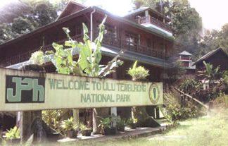 brunei, borneo, rainforest, canopy walk, nature, outdoor, trekking, suspension bridge, boat ride, waterfall, national park, wildlife, forest, outdoors, temuai, ulu temburong national park
