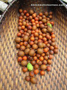 Nyarok, Kalimantan Barat, Kampung Sadir, Padawan, Borneo Highland, Culture, Traditional, Bidayuh, Gawai, Land Dayak, ritual, kuching, native, malaysia, indonesia, sarawak, Suruh Engkadok, wild fruits