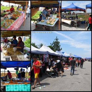 spaoh, betong, sarawak, malaysia, borneo, event, puffer fish, ikan buntal, fishing village, exotic delicacy, local food