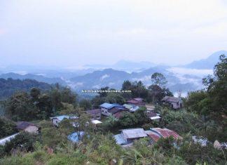 authentic, Borneo, culture, dayak, Ethnic, plant, indigenous, Kuching, Malaysia, native, outdoors, Padawan, Sarawak, traditional, tribal, tribe, village, waterfall