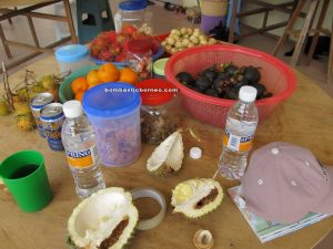 bitter bean, Borneo, crystal quartz, dabai, durian, Iban longhouse, malaysia, mangosteen, Petai farm, rambutan, Sarawak, 沙捞越, Sarikei, stink bean, Sungai Marok