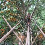 mountain, waterfall, Borneo Highland, Bidayuh, village, nature, jungle, trekking, Land Dayak, Sarawak, kuching, native, malaysia, Bengoh Dam, Kampung Sait, hanging bridge, bamboo, suspension
