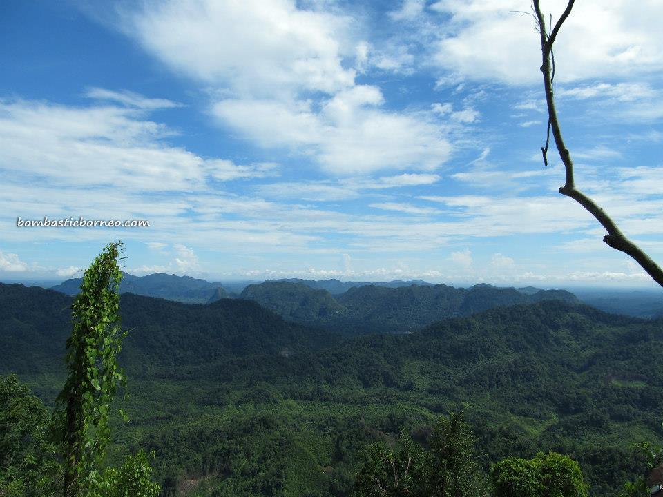 mountain, waterfall, Borneo Highland, Bidayuh, village, nature, jungle, trekking, Land Dayak, Sarawak, kuching, native, malaysia, Bengoh Dam, Kampung Sait, hanging bridge, bamboo, suspension, bungoh range, exotic fruit