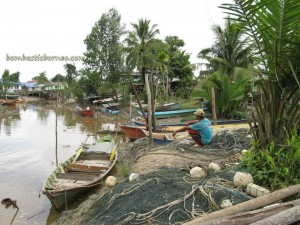 adventure, Agro tourism, Borneo, chinese, Asajaya, crabbing, dayak iban, fruits farms, Kampung Beradek, Kampung Tiang Api, nature, outdoor, 古晋吻龙福德公庙, Kuching, Samarahan,