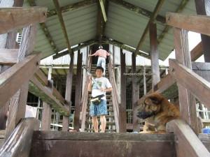 adventure, Borneo, Dayak Iban, tribal, Betong, Sarawak, Malaysia, Culture