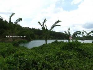 lake, Kalimatan timur, Kutai Barat