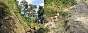 adventure, Balleh river, Borneo, hiking, hornbill, Hose mountain, Iban, Kapit, malaysia, Mujong, outdoor, Rajang river, Sarawak, trekking, wild boar, wild plants, wildlife, headhunter, jungle, hunting
