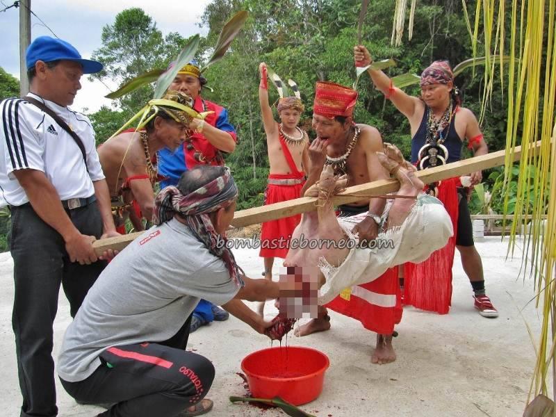 Bidayuh Ritual Skulls Culture Ceremony Sarawak Malaysia Bombastic Borneo