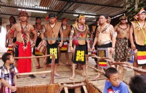 authentic, Borneo, culture, Ethnic, event, Gawai Sawa, indigenous, Kuching, Kumang, land dayak, malaysia, native, outdoors, paddy harvest festival, samarahan, Sarawak, Serian, thanksgiving, traditional, tribal, tribe, village